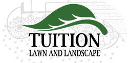 Tuition Lawn and Landscape