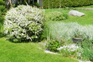 Landscaping in Liberty Township OH