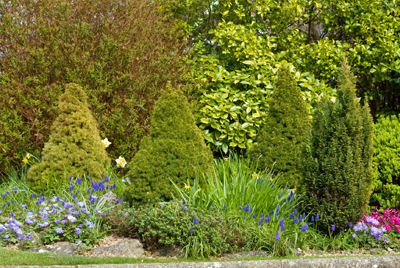 Landscaping In West Chester Oh Tuition Lawn And Landscape